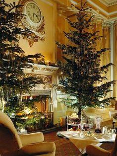 Christmas ~ natural Christmas tree in elegant living room Elegant Christmas, Merry Little Christmas, Christmas Love, Christmas Greetings, Beautiful Christmas, Winter Christmas, Christmas Trees, Christmas Carol, 1980s Christmas