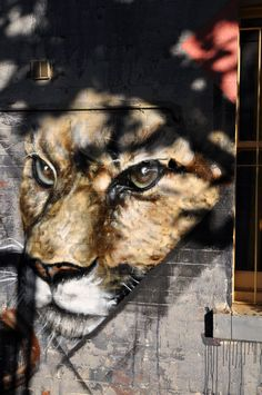 Artist Adnate ...Big cat shadow #Adnate #Street #Art