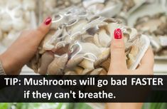 While larger mushrooms have a longer shelf life and last better than smaller ones, you have a week or so before you're facing slimy, rotting, bad mushrooms. Do Mushrooms Go Bad, Large Mushroom, Home Recipes, Kitchen Hacks, Food Preparation, Chinese Food, Quick Meals, Recipe Ideas, Side Dishes
