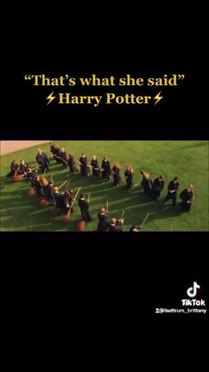 Harry Potter Imagines, Harry Potter Puns, Harry Potter Feels, Harry Potter Marauders, Harry Potter Universal, Harry Potter Characters, Funny Vidos, Cute Funny Dogs, Funny Memes