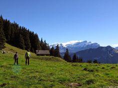 In der Natur unterwegs: Familientrip mit Gipfelsupplement - La Riondaz Bei Solacyre #Leysin #wandern #Schweiz