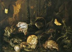 Otto Marseus van Schrieck - Forest Floor with Mushrooms, Snakes, Toad and Lizard