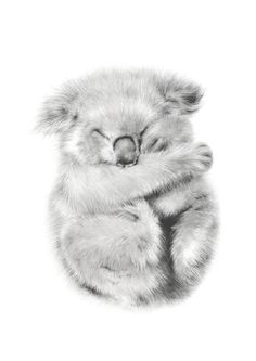 Koala art print, perfect for your nursery or kids room. Available in A5 - A1 (small to super big)