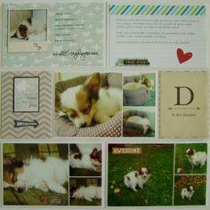 Můj papírový relax: Project life 10 - right page Project Life, Corgi, Relax, Projects, Animals, Log Projects, Corgis, Blue Prints, Animales
