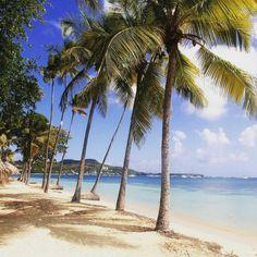 Les Boucaniers, Martinique