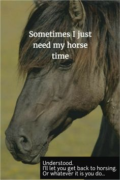 Sometimes I just need my horse time. My horse 😢 Equine Quotes, Equestrian Quotes, Horse Girl, Horse Love, Pretty Horses, Beautiful Horses, Dressage, Reining Horses, Inspirational Horse Quotes