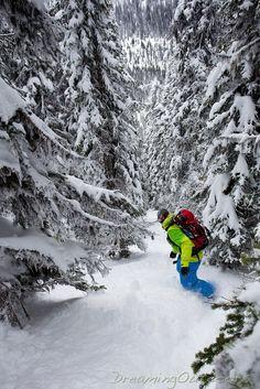 Just beautiful - Trophy Mountain, BC | snowzine.com