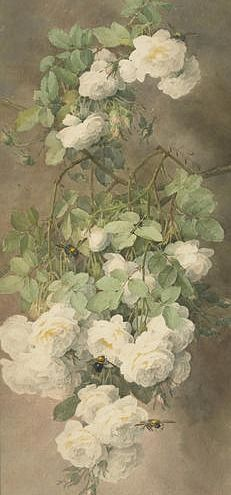 Paul de Longpré (French, 1855-1911). White Roses and Bumblebees. 19th century.