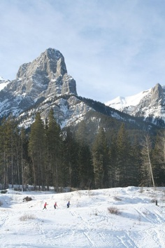 Cross Country Skiing, Canmore, Alberta. This is where the best in the world come to train: Canmore Nordic Centre, located immediately west of Canmore, 105 km west of Calgary. With 70 kms of groomed trails and scenery like this, it's easy to see why.