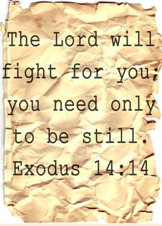 YES. Exodus 14:14 and Palsm 46:10   the rest of the story......BE STILL and KNOW THAT I AM GOD.......BE STILL