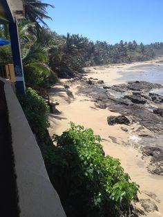 Playa brava restaurant in Arecibo