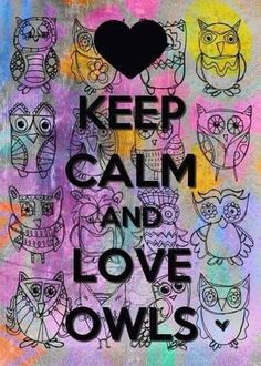 ☮ American Hippie Psychedelic Art ~ Keep calm and love owls Keep Calm Posters, Keep Calm Quotes, Owl Quotes, Life Quotes, Keep Calm Pictures, Keep Clam, Keep Calm Signs, Tips & Tricks, Wise Owl