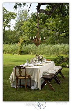 Gorgeous set up for an outdoor dinner party