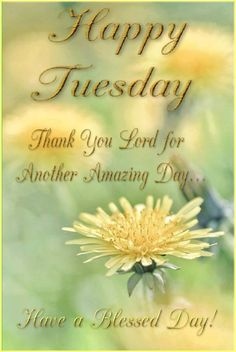 Thank you Lord... Have a Blessed Tuesday Friend! ♥