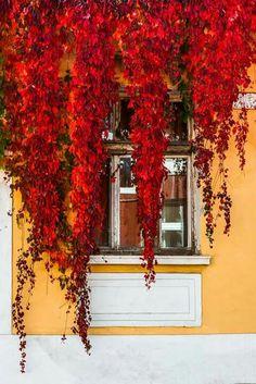 Sofia Bulgaria, Southern Europe, Sidewalk, Pavement, Curb Appeal