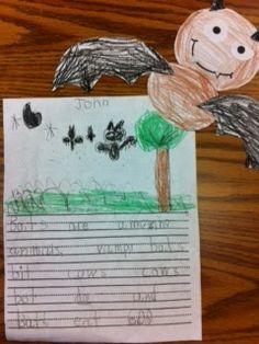 1st Grade Fireworks: WRITING