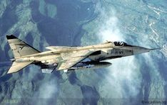 French Armée de l'Air 1995 - French Sepecat Jaguar is fully involved in the transition from the Cold War to the new era.