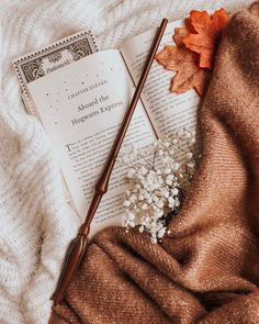 brittany autumn aesthetic on day 01 - off to hogwarts happy september first, its time to go back to hogwarts pack your trunks Cozy Aesthetic, Autumn Aesthetic, Autumn Photography, Book Photography, Hogwarts, September Wallpaper, Photowall Ideas, Happy September, October