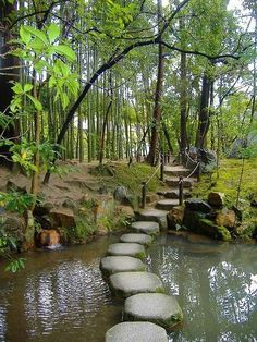 Stepping stones in Tenjuan Gardens, Kyoto, Japan by Sharilyn Anderson