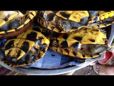 Asian Street Food Cooking, Khmer Street Food, Cambodia Street Food 2017