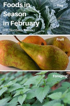 A Green and Rosie Life: Veg, Fruit and Foraged Foods in Season in February