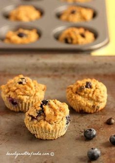 Chocolate Chip Blueberry Fiber Muffins, grain free, paleo and low carb Paleo Dessert, Dessert Recipes, Low Carb Deserts, Low Carb Sweets, Ketosis Desserts, Keto Friendly Desserts, Cupcakes, Low Carb Breakfast, Breakfast Recipes