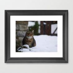 Snow Cat Framed Art Print by Rainer Steinke - $40.00 snow winter cat katze schnee