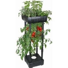 Upside Down Tomato Planter Free Standing Outdoor Garden Vegetable Grow Your Own- can this be larger- on wheels