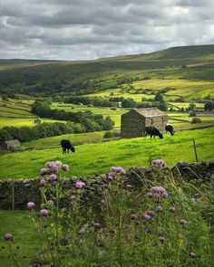 Yorkshire Dales, England photo via briana Yorkshire England, Yorkshire Dales, Cornwall England, North Yorkshire, Beautiful World, Beautiful Places, British Countryside, England And Scotland, Cumbria