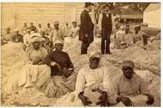 A group of enslaved Women sitting in piles of cotton with two white male overseers.