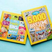 Take a look at the National Geographic event on #zulily today!