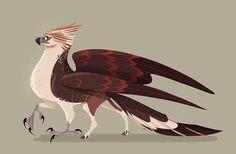 Buckbeak. #hippogriff #harrypotter
