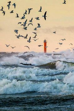 Wavy evening - Riga, Latvia (by Anton Abitaev on Lighthouse Luis Gonzaga, Beautiful World, Beautiful Places, Beautiful Birds, Lighthouse Pictures, Stormy Sea, Baltic Sea, Surfing, Scenery