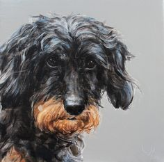 Dog Art | Contemporary Dog Portraits