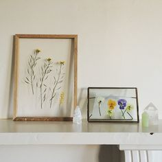 My pressed flowers DIY is now up on theplanthunter.com.au, complete with photos by my beau @raphboogie  @theplanthunter My Beau, Crafty, Frame, Instagram Posts, Flowers, How To Make, Diy, Photos, Decor