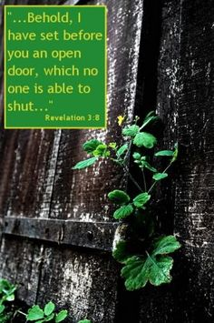 Revelations 3:8 ~ I have set before you an open door, which no one is able to shut.....www.lightsource.com