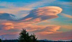 Lenticular clouds formed around Mt Rainer