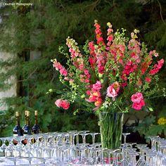 Stoneblossom Florals
