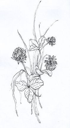 summer sketch My Works, Sketch, Drawings, Summer, Art, Sketch Drawing, Sketches, Art Background, Summer Recipes