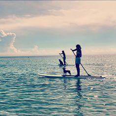 #Paddleboarding #dogs #goodlife