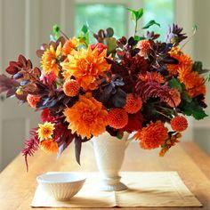 les fleurs coloré