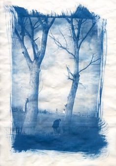 Paolo Del Signore - cyanotype (Cyanotype is an alternative form of photographic printing which makes use of iron compounds instead of the traditional silver compounds, resulting in rich blue tones.)