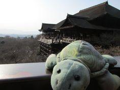 清水寺 (Kiyomizu-dera Temple) em 京都市, 京都府