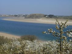From Padstow looking across to Daymer bay.
