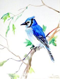 Blue Jay, original watercolor painting 12 X 9 in, watercolor birds, blue green