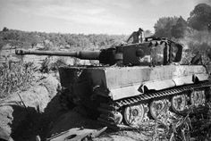 July 26th 1944, Italy. Tiger I destroyed by Nea Zealand troops, marking their first kill on the Tiger.