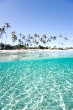 Beach in Moorea, Tahiti