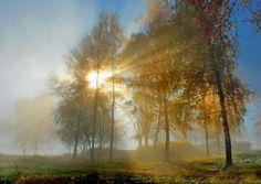 De kleuren van herfst