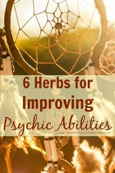 Remedies Friendly, non-high inducing herbs to help give you clarity in your psychic abilities.
