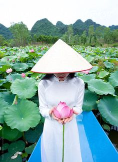 Dune walking phu yen vietnam vietnam pinterest vietnam dune vietnamese woman in traditional dress with lotus flowers vietnam by hugh sitton mightylinksfo